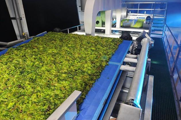 Установка по переработке водорослей
