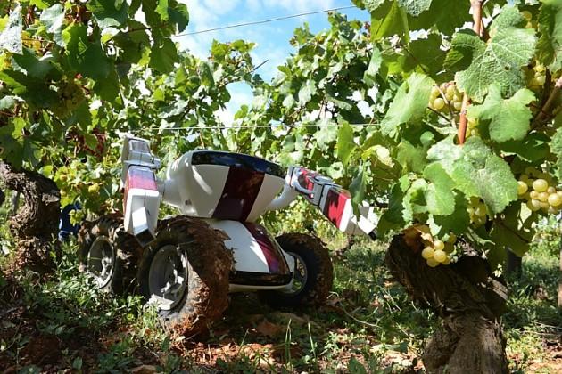 Роботы в сельском хозяйстве