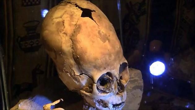 необычный череп