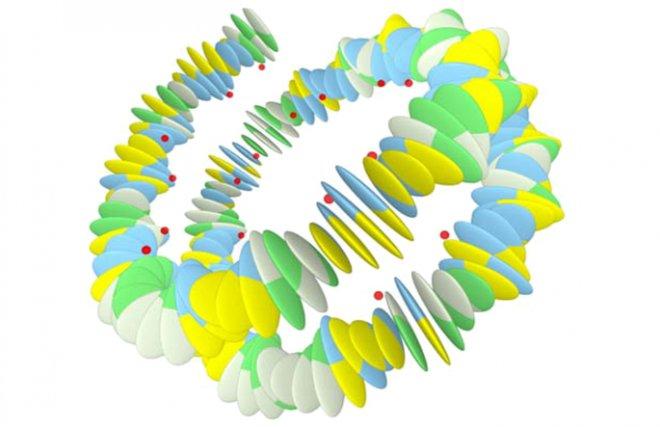 Второй слой информации, наложенный поверх генетического кода