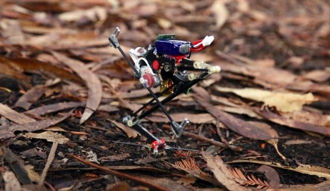 Прыгающий робот Salto демонстрирует успехи в паркуре