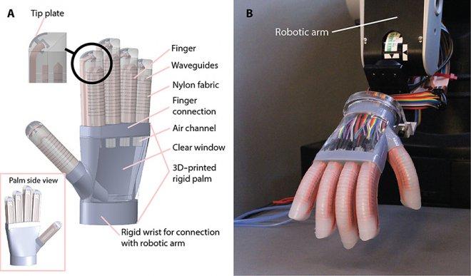 Ученые создали робота снежной рукой— для ощупывания помидоров