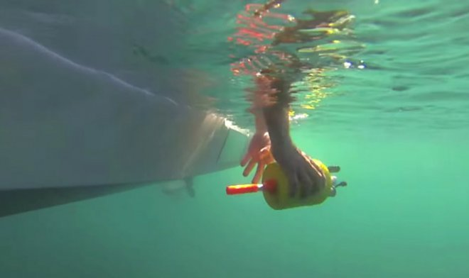 Ученые изучили планктон при помощи стаи подводных роботов