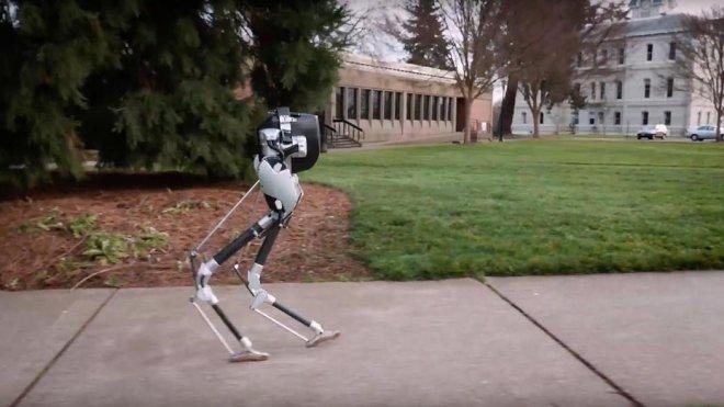 Робот Кэсси
