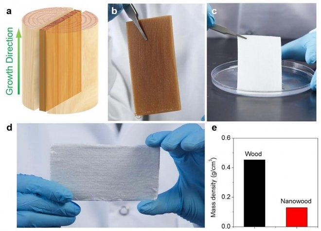 В США разработана «нанодревесина» с уникальными изоляционными свойствами