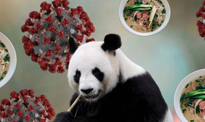 Панда и китайская цензура