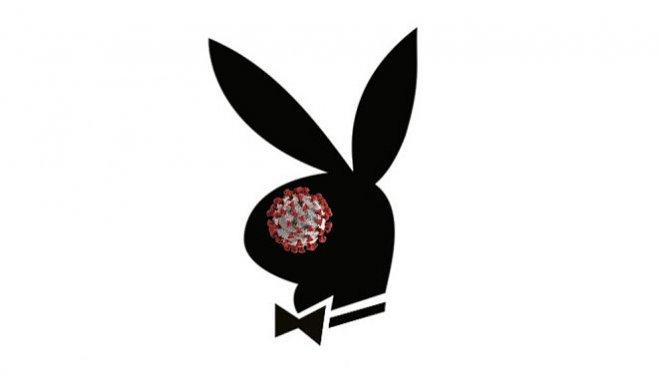 Кролик Playboy