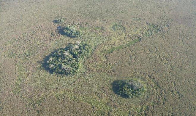 Острова в Амазонии