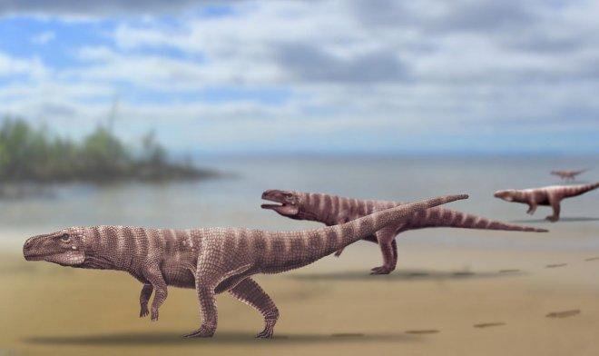 Древние крокодилы