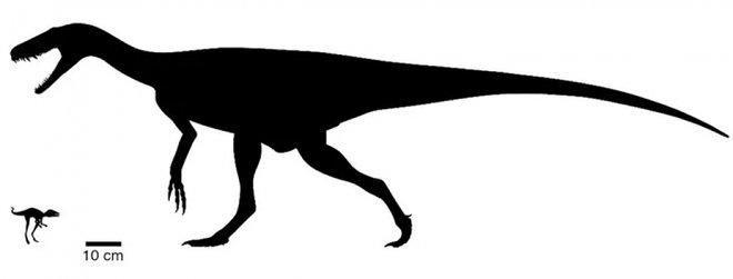 Динозавр Kongonaphon kely