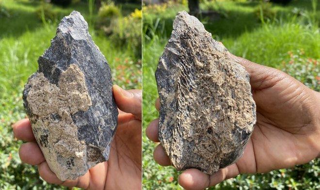 Найден уникальный топорик из кости бегемота возрастом 1,4 млн. лет