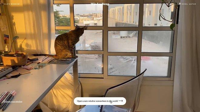Проект WindowSwap