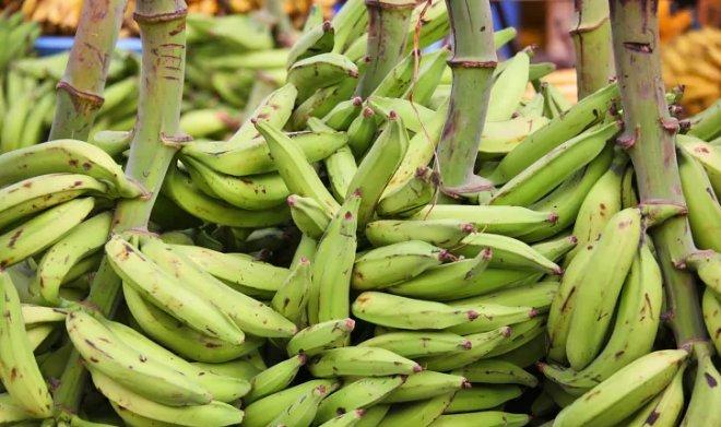 Композиты с волокнами банана позволят создавать легкие и прочные автомобили