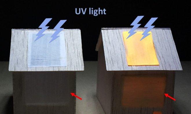 Люминесцентная древесина подсветит комнату, подобно лампе