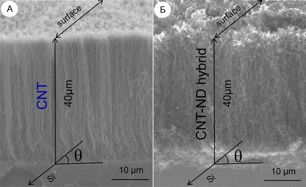 Nanotubes and nanodiamonds