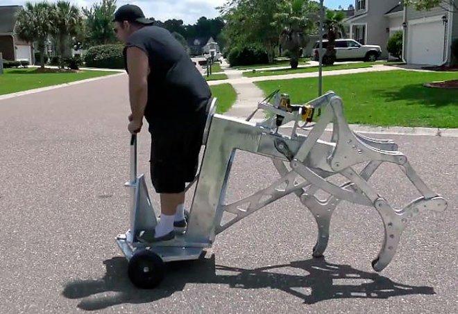 Walking chariot