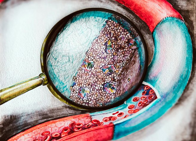 Illustration by Julia Chapurina
