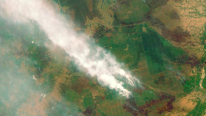 Forest fires in Indonesia