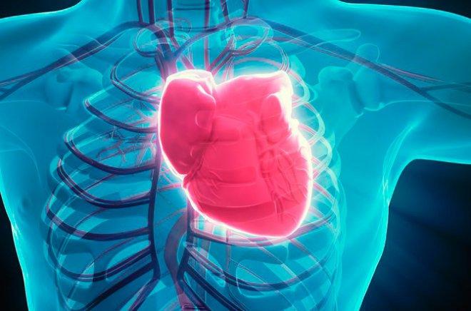 Cardiac recovery