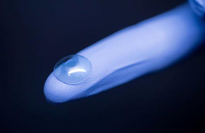 Bacterial resistant cornea