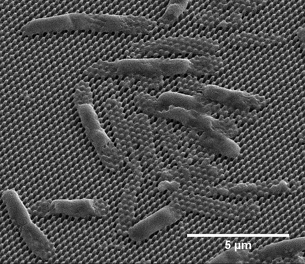 Nano-coating