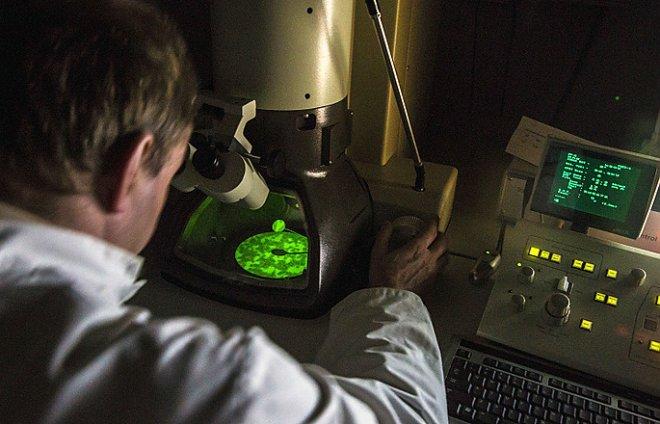 В поисках новых антибиотиков