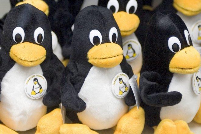 Пингвины Linux