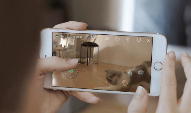 robot ebo HNSP Un pequeño robot alegrará la vida de tu mascota en tu ausencia