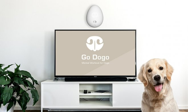 Go Dogo