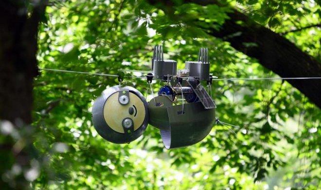 Робот-ленивец