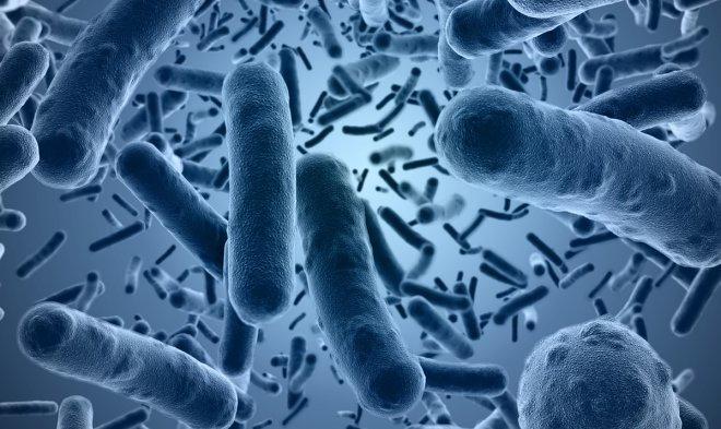 На смену антибиотикам могут прийти прорывные антивитамины