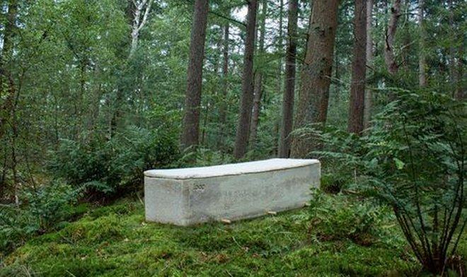 Гроб из мицелия