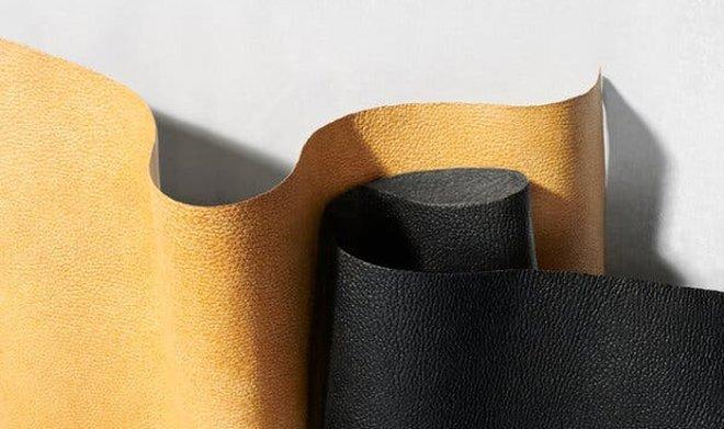 Adidas и Lululemon начинают производство одежды из грибной кожи