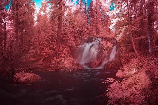Фото в ИК-спектре