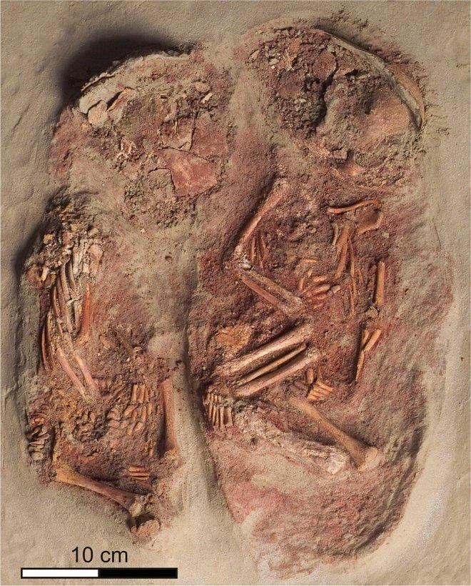 В Австрии обнаружено древнейшее захоронение близнецов-младенцев