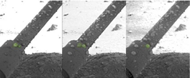 Как рассол поможет будущим колонистам выжить в условиях Марса