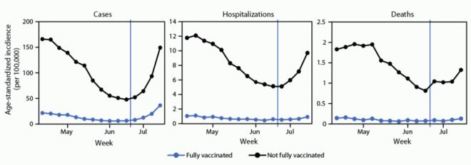 covid 19 La investigación confirma la efectividad de las vacunas contra la cepa delta de Covid 19