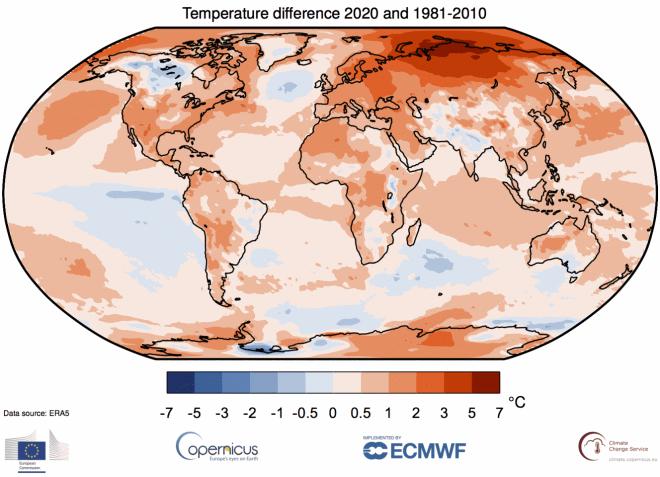 2020 год стал самым жарким за всю историю наблюдений