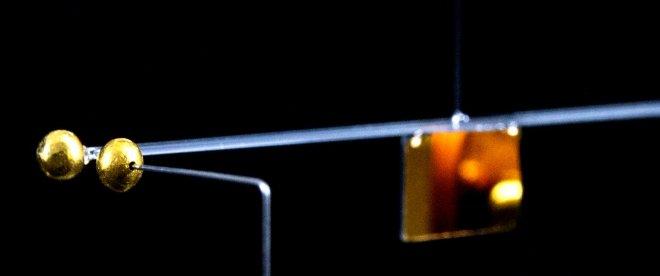 Австрийские физики измерили гравитационное притяжение божьей коровки