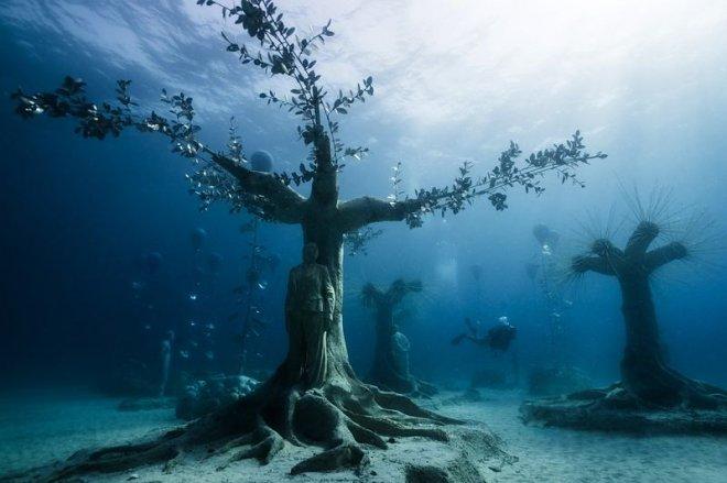 Подводный лес